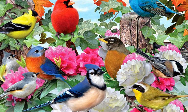 Международный фестиваль птиц в долине Хула (Израиль) пройдет в конце ноября