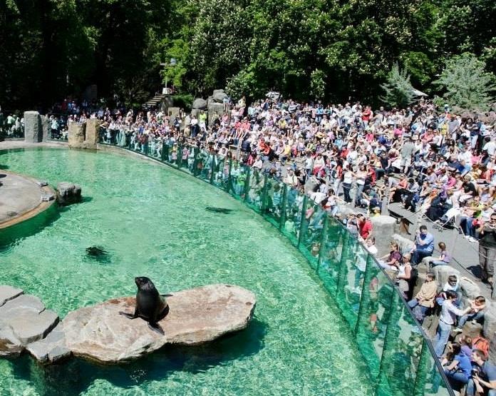До Пражского зоопарка из Праги 6 запустят канатную дорогу