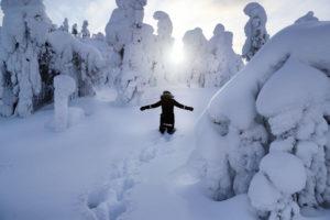 Коттеджи в Финляндии