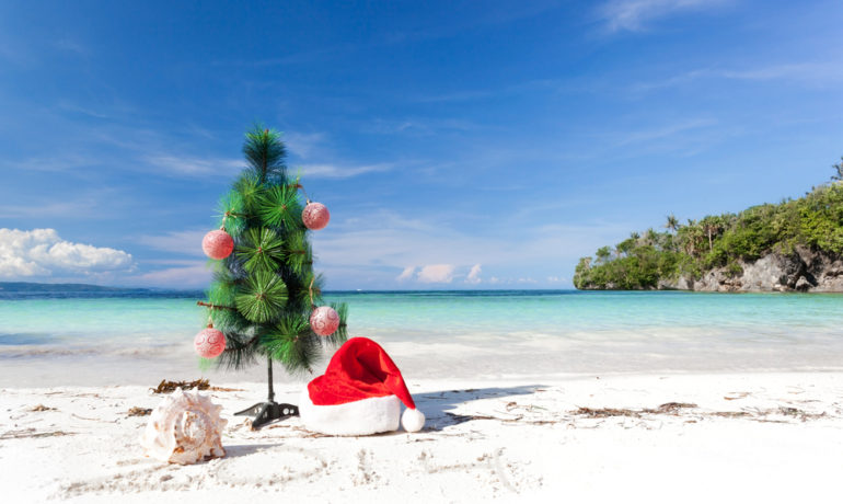 Новый год и Рождество в Южной Африке